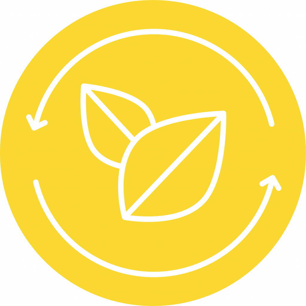 seeds icon